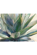 Canvas ALoes 60X80 cm