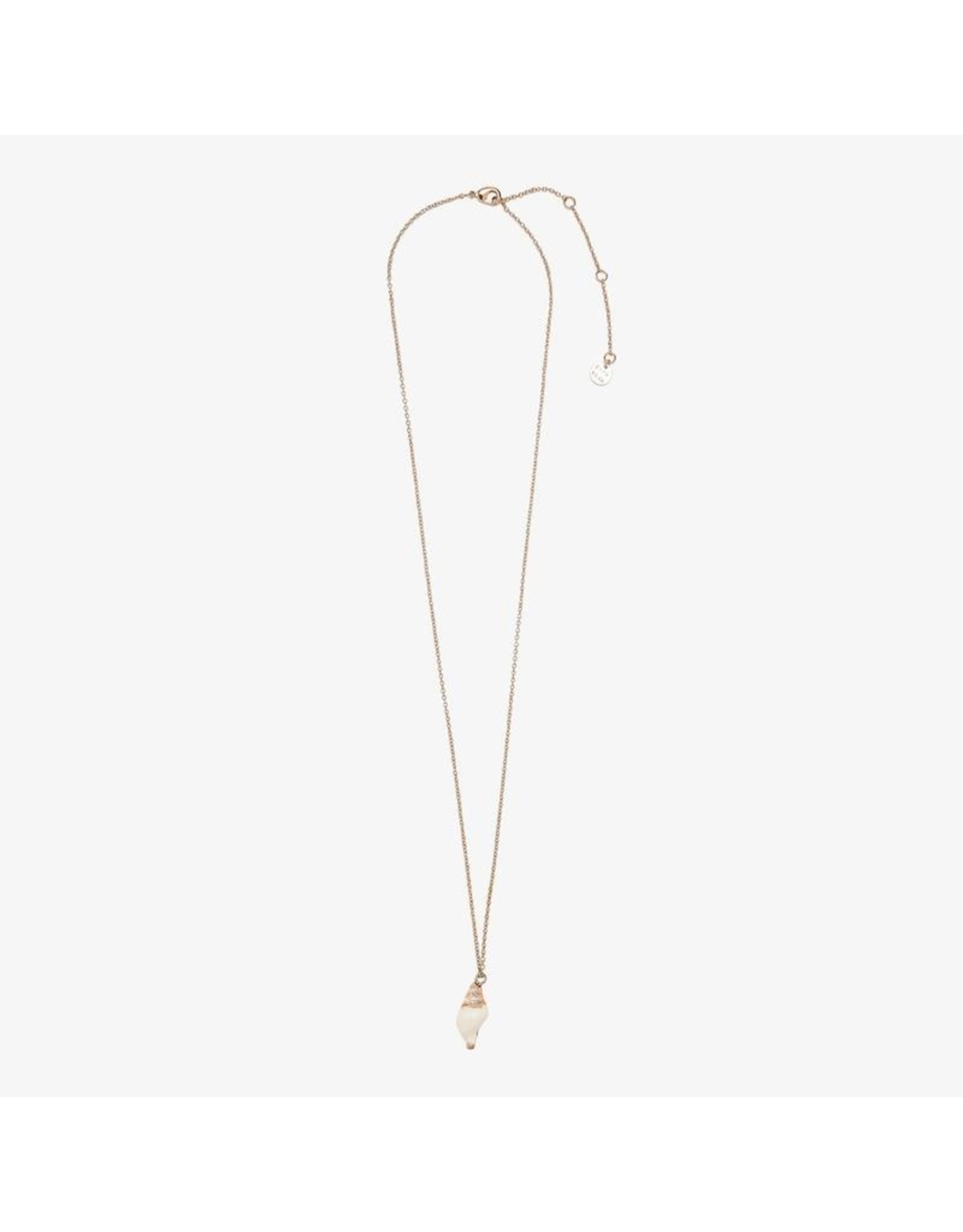 Pura Vida Electroplated Conch Necklace, Rose Gold