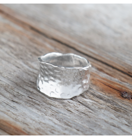 Glee jewelry Harmony Ring/Silver