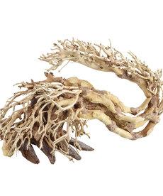 UNDERWATER TREASURES Dragon Wood - Small