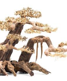 UNDERWATER TREASURES Bonsai Wood With Rock L