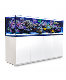 Red Sea RED SEA REEFER 3XL Rimless Reef-Ready Aquarium System - 900 - White