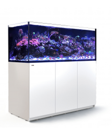 Red Sea RED SEA REEFER XXL Rimless Reef-Ready Aquarium System - 625 - White