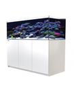 Red Sea RED SEA REEFER XL Rimless Reef-Ready Aquarium System - 525 - White