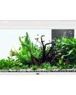 """AQUATLANTIS Elegance Expert 100 Aquarium  - (White) -  40.25"""" x 15.75"""" - 51.5 gal"""