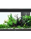 "AQUATLANTIS Elegance Expert 100 Aquarium - (Black) - 40.25"" x 15.75"" - 51.5 gal"
