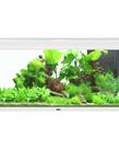 """AQUATLANTIS Elegance Expert 120 Aquarium - (White)  - 48"""" x 16""""  - 61 gal"""