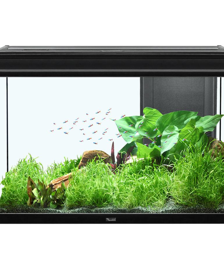 "AQUATLANTIS Elegance Expert 80 Aquarium - (Black) -  31.75"" x 15.75"" - 36.5 gal"