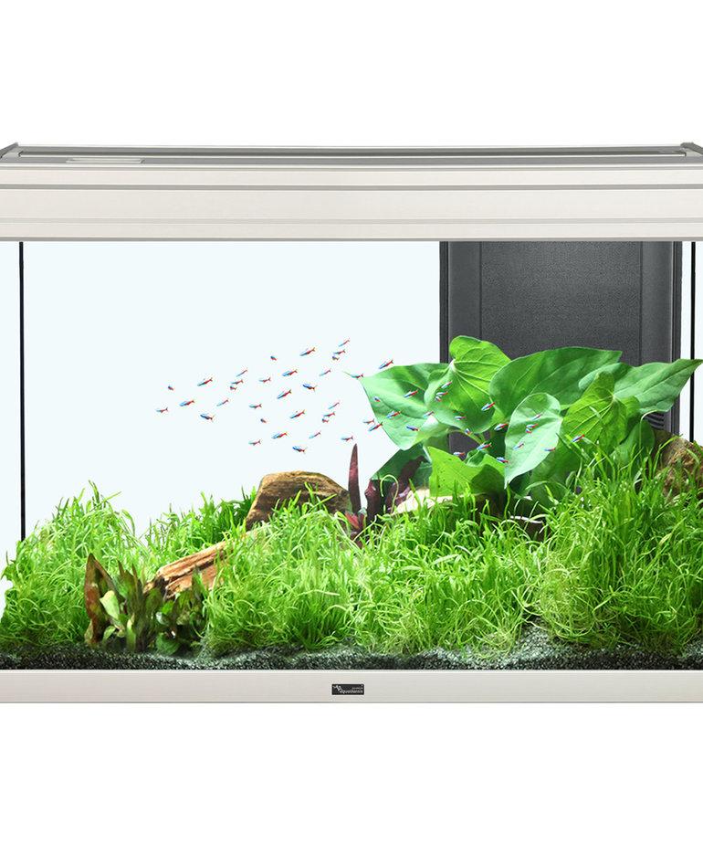 """AQUATLANTIS Elegance Expert 80 Aquarium - (Grey) - 31.75"""" x 15.75"""" - 36.5 gal"""