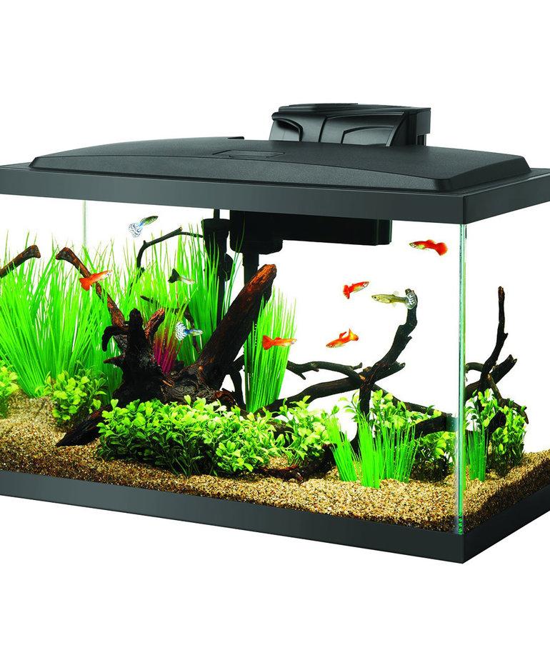 AQUEON LED Aquarium Kit 10 gal