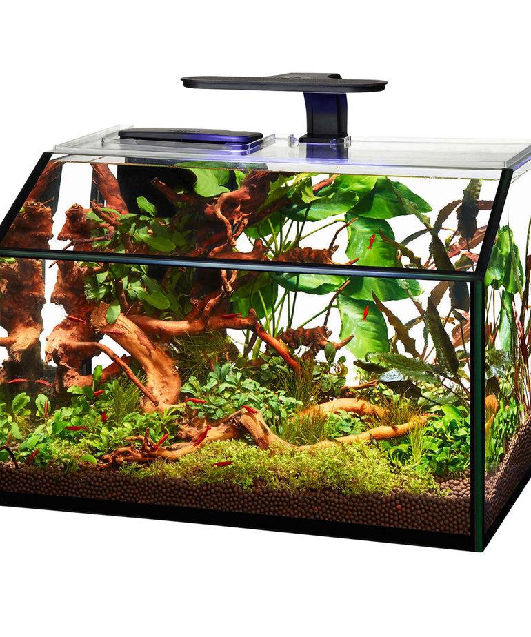 AQUEON LED Shrimp Aquarium Kit - 8.75 gal