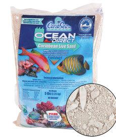 CARIBSEA Ocean Direct Caribbean Live Sand 5 lb