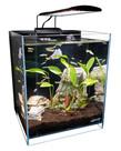 """Lifegard LIFEGARD AQUATICS 45° Low Iron Ultra Clear Aquarium - 8.3 gal - 11.81"""" x 11.81"""""""