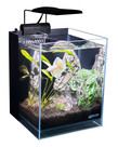 "Lifegard LIFEGARD AQUATICS 45° Betta Low Iron Ultra Clear Aquarium - 2.65 gal - 7.87"" x 7.87"""