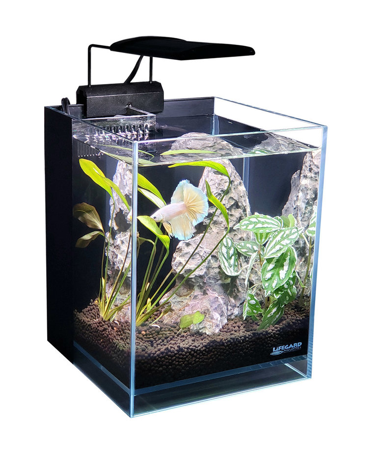 "Lifegard LIFEGARD AQUATICS 45° Betta Low Iron Ultra Clear Aquarium - 1.2 gal - 5.9"" x 5.9"""