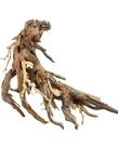 UNDERWATER TREASURES Octopus Wood - Medium