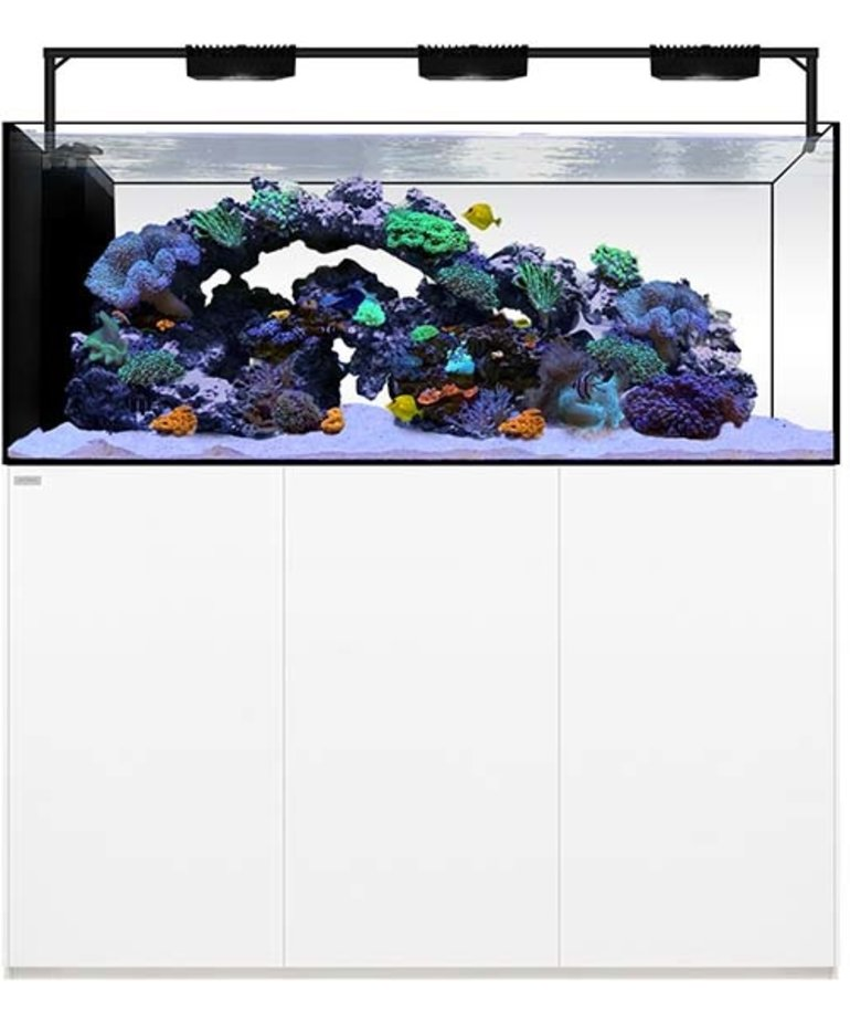 Waterbox WATERBOX AQUARIUMS Peninsula 6025 White