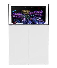 Waterbox WATERBOX AQUARIUMS AIO 50.3 Blanc