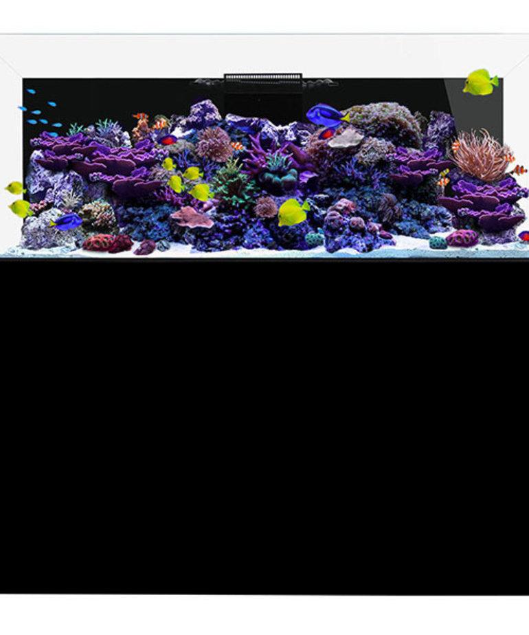 Waterbox WATERBOX AQUARIUMS REEF 220.6 Noir