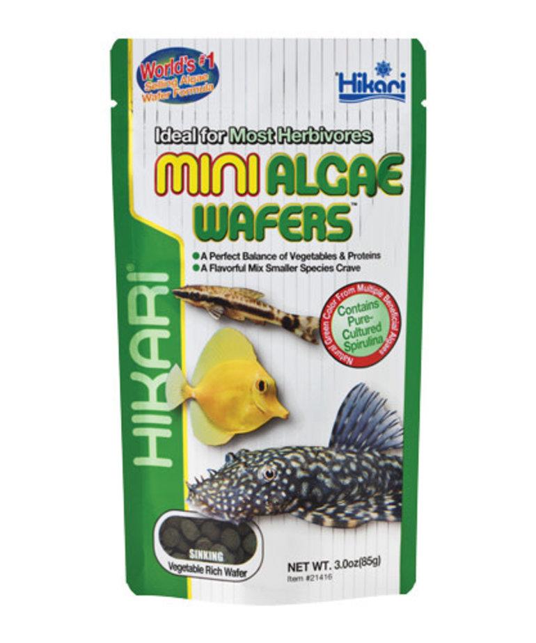 Hikari HIKARIMini Algae Wafers - 3 oz