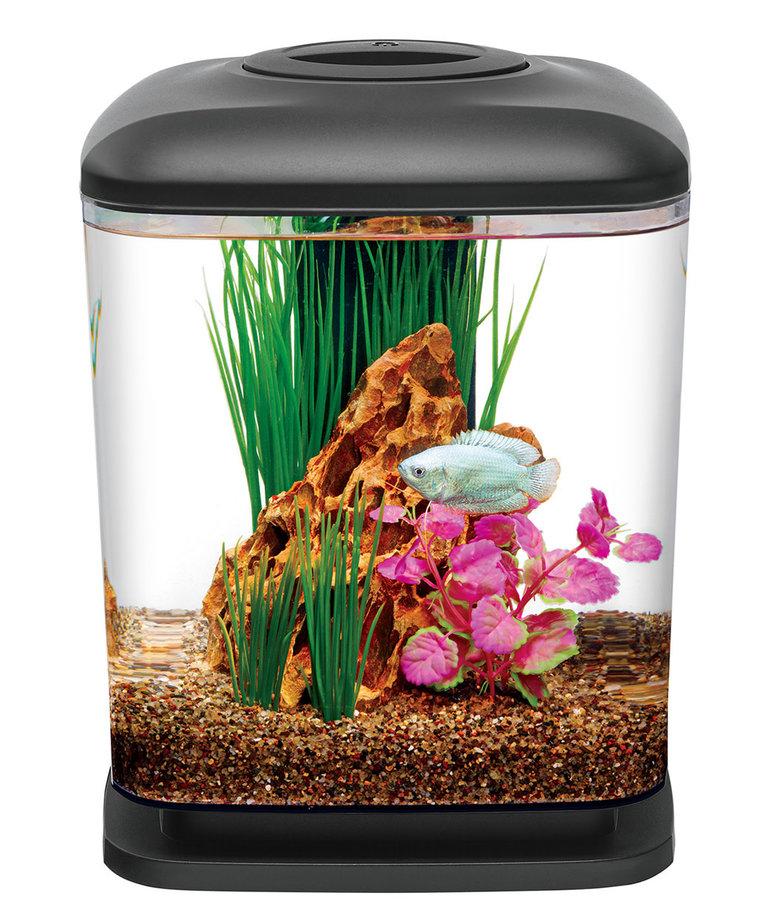 AQUEON LED MiniCube Desktop Aquarium Kit - 1.6 gal