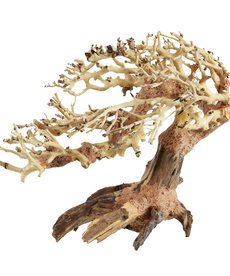 UNDERWATER TREASURES Romantic Bonsai Wood - Small