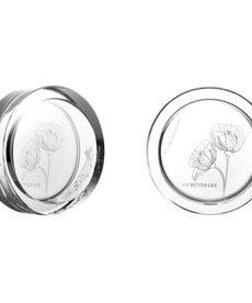 VIV Shrimp Dish Dia 60 x 20mm (130-01)