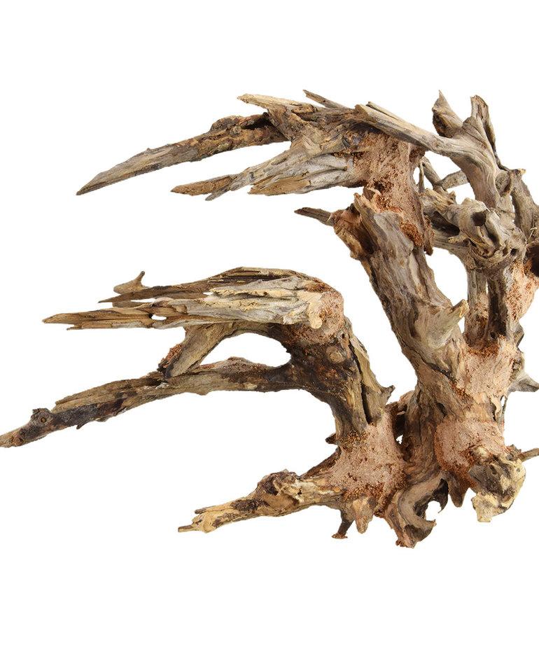 UNDERWATER TREASURES Kirin Bonsai Wood Md