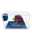 Eshopps ESHOPPS Tanklimate Nano Acclimation Box