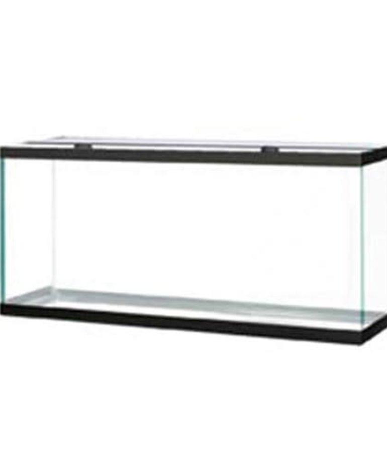 AQUEON Standard Aquarium - Black Frame - 75 gal - Clear Silicone