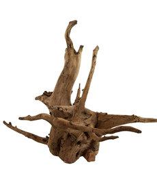 UNDERWATER TREASURESEucalyptus Root - Small