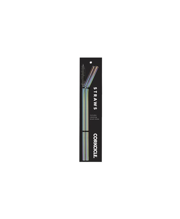 Tumbler Straw 2-Pack in Prism