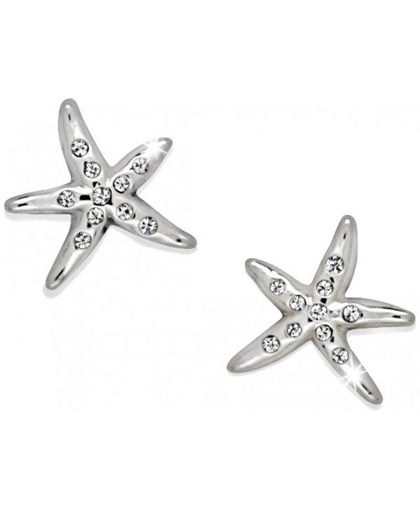 Cape Star Mini Post Earrings