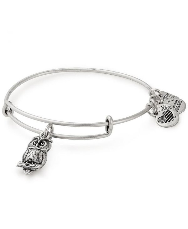 Charity By Design Owl Charm Bangle