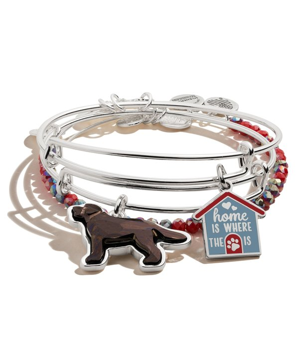 'Home is Where the Paw is' Set of 3