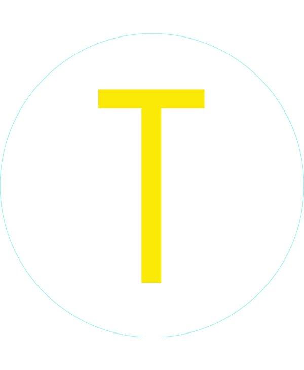 "Bogg Bit - Initial ""T"""