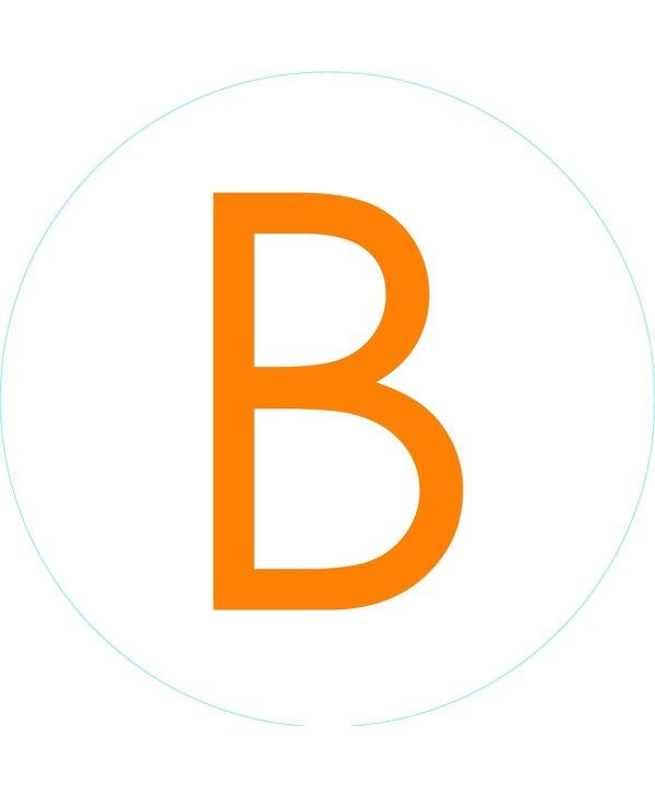 """Bogg Bit - Initial """"B"""""""