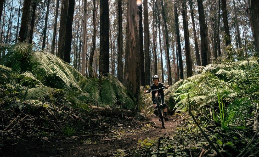 Victoria's hidden MTB gem - Lake Mountain