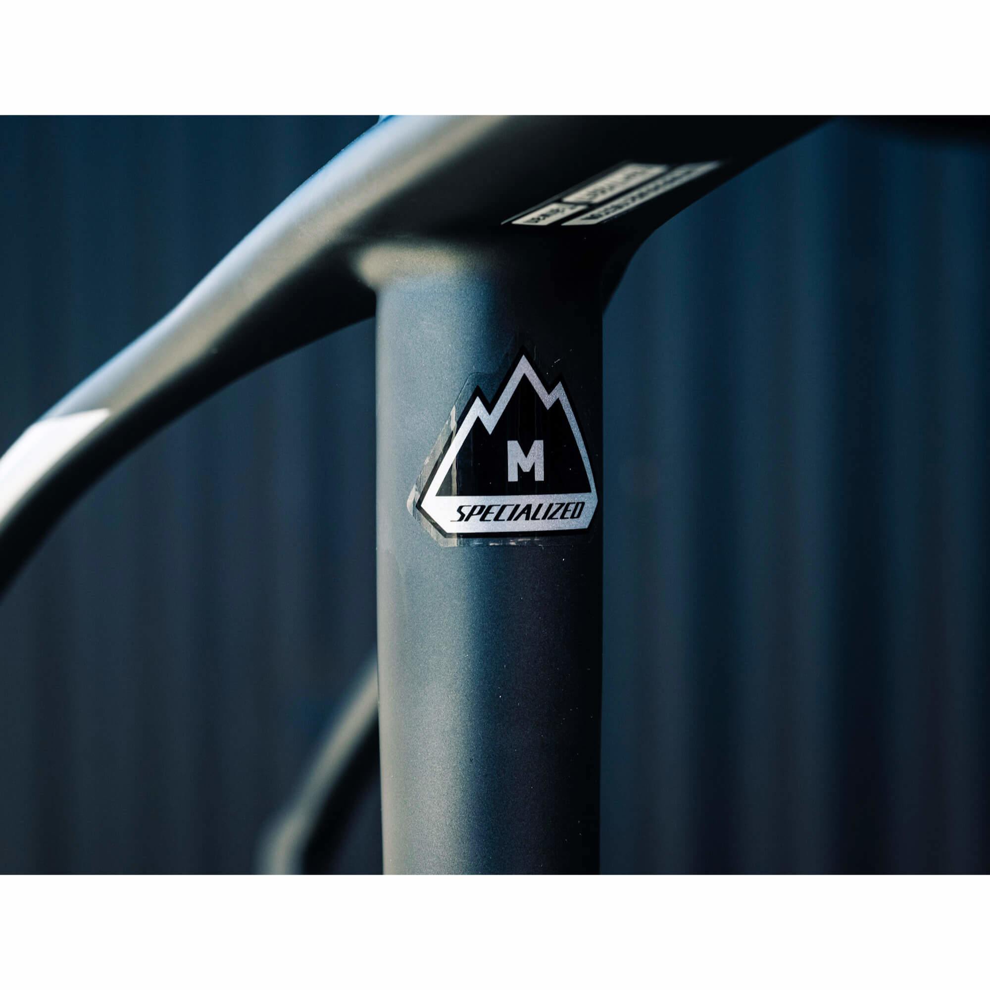 Stumpjumper Hardtail Pro Carbon World Cup 29 Frame Char/WHardtail/Flored X-Large 2016-2