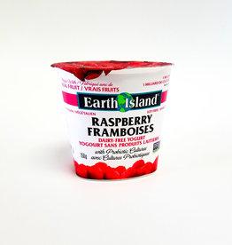 Earth Island Earth Island - Yogurt, Raspberry (150g)