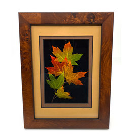 LEAF LINES 5X7 SUGAR MAPLE SHADOWBOX