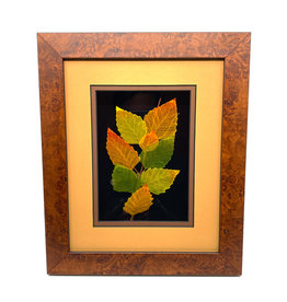 LEAF LINES 8X10 BIRCH SHADOWBOX