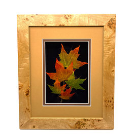 LEAF LINES 8X10 SUGAR MAPLE SHADOWBOX
