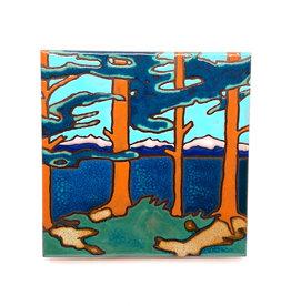 PACIFIC BLUE TILE MOUNTAIN LAKE TILE