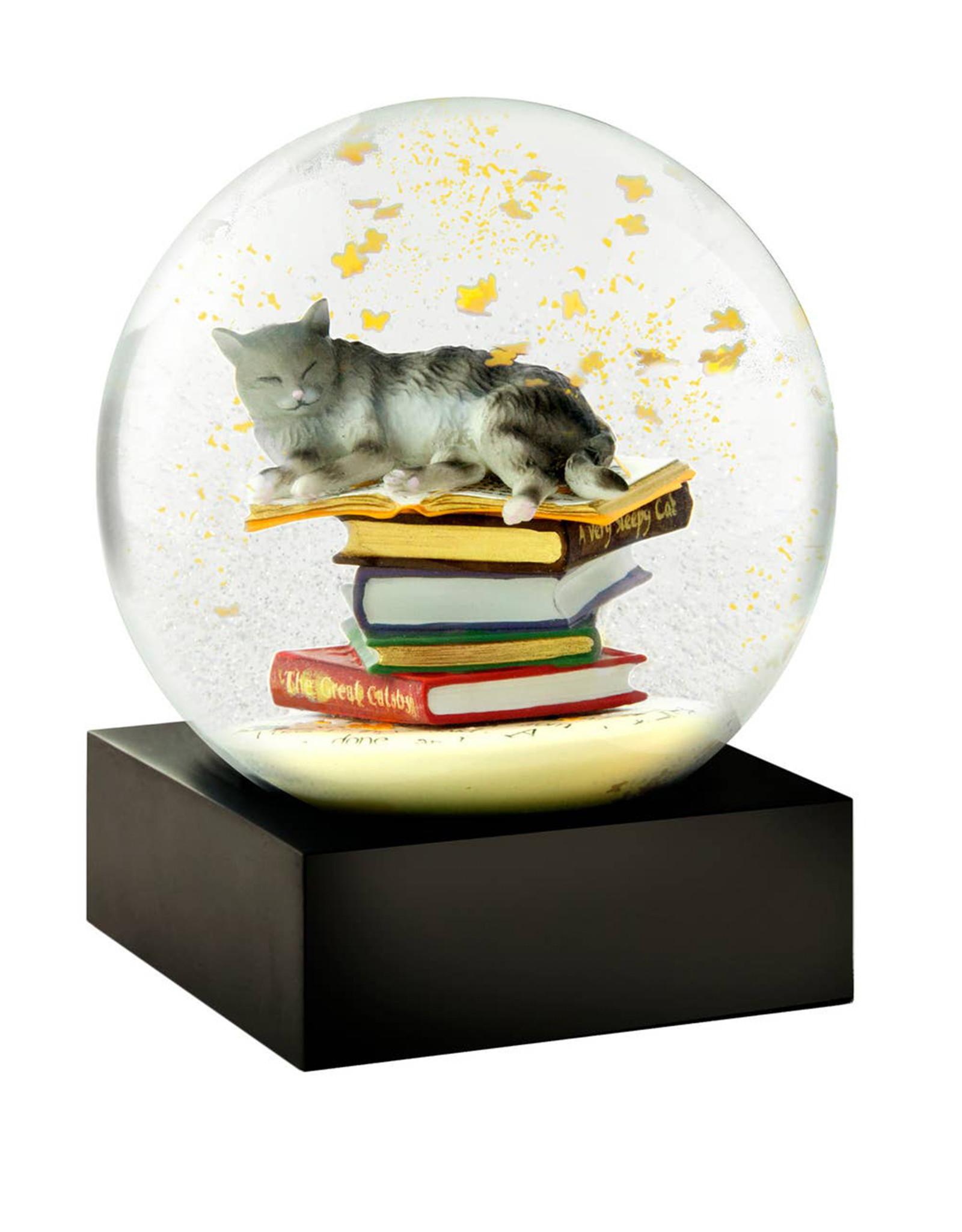 COOL SNOW GLOBES CAT ON BOOKS SNOWGLOBE