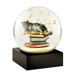 COOL SNOW GLOBES CAT ON BOOKS SNOWGLOBE