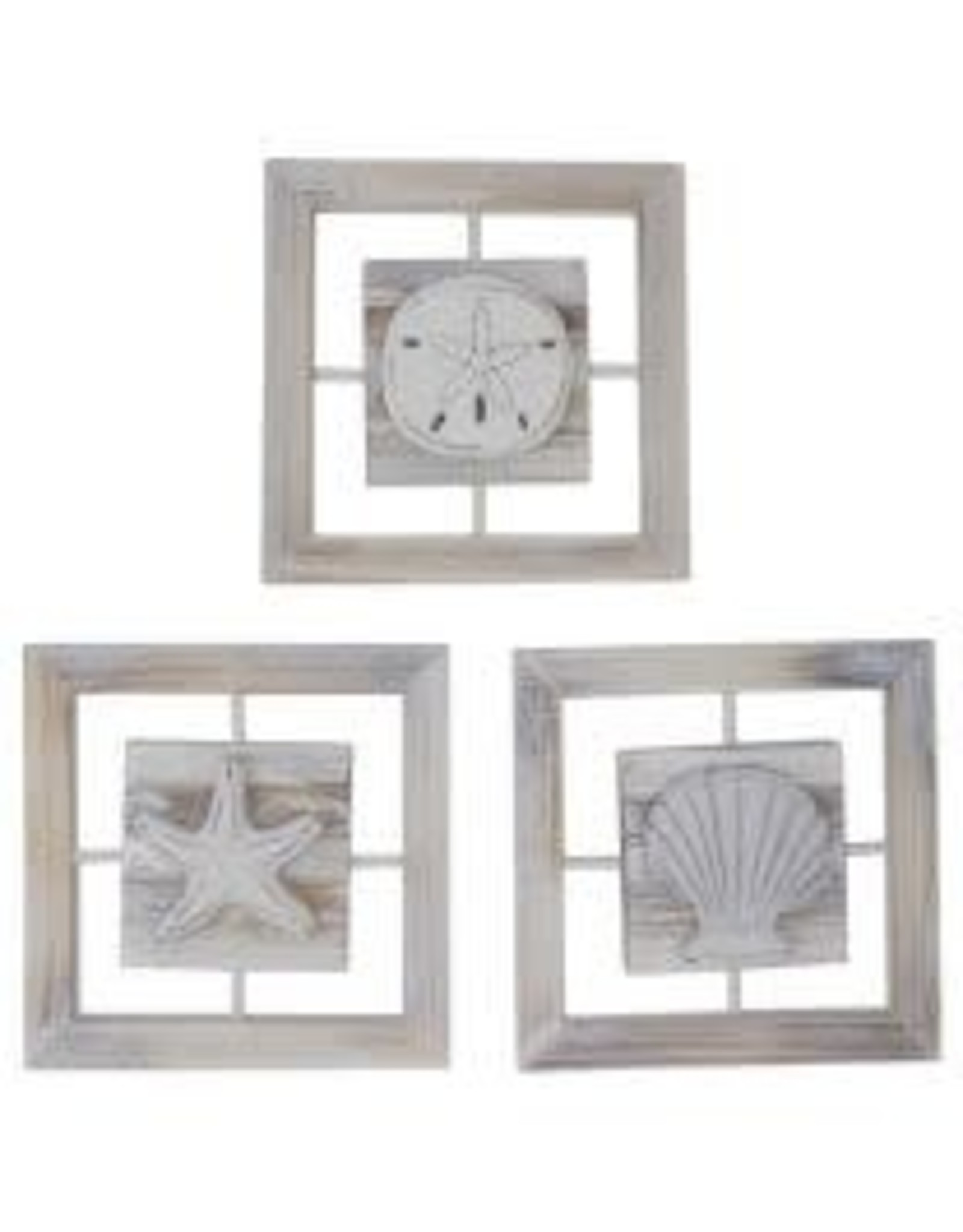 Wall- Shell Window Frames assort