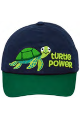 Hat-Turtle Power