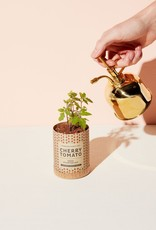 Modern Sprout LLC Brass Plant Mister
