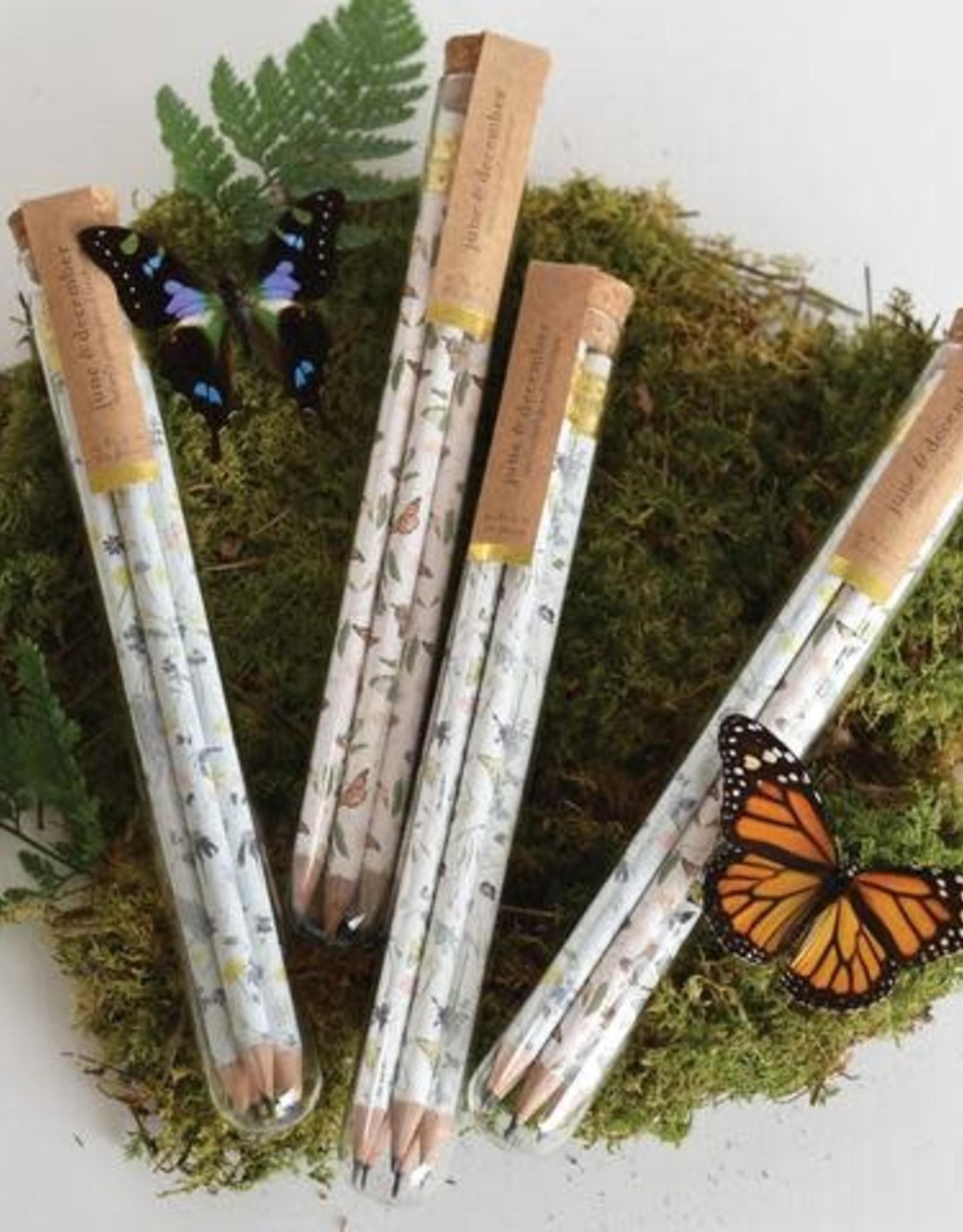 June and December Pencil Terrarium